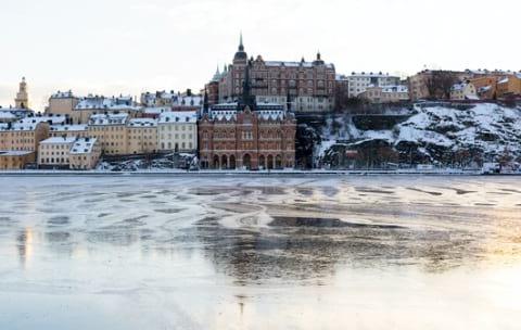 cuarentena sueca cuarentena suecia coronavirus series netflix